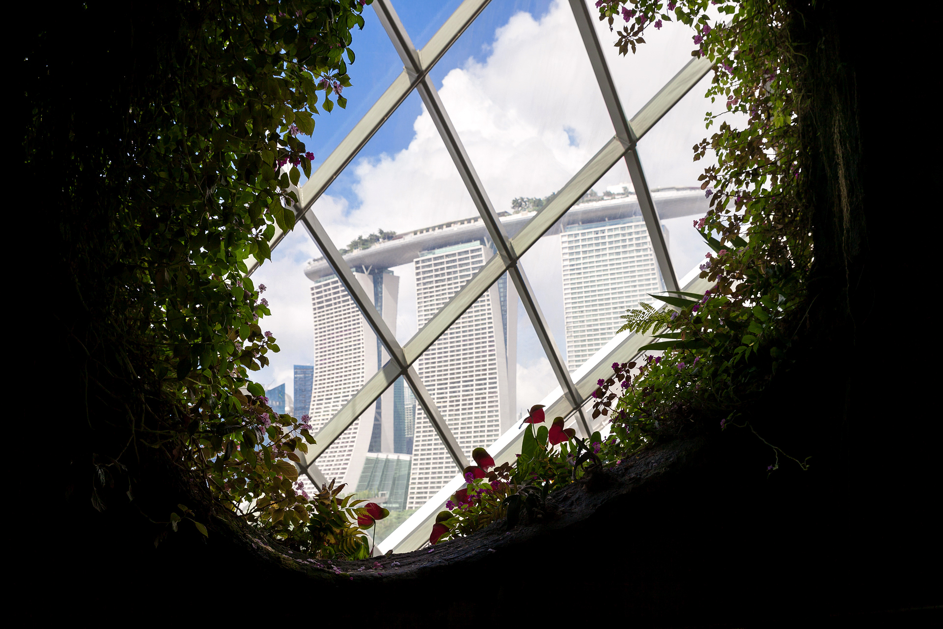 Gardens by the bay dome Singapore